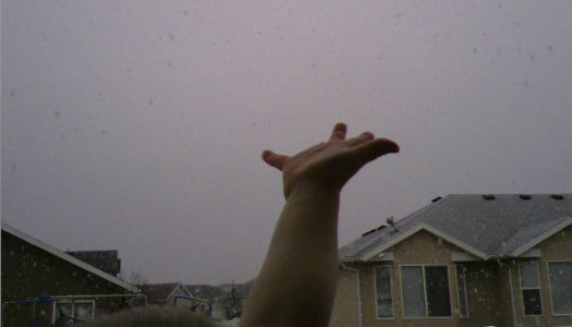 Picture of Reaching for Snowfall